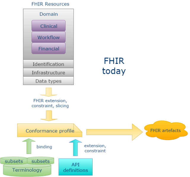 Making FHIR work for everybody | Woland's cat